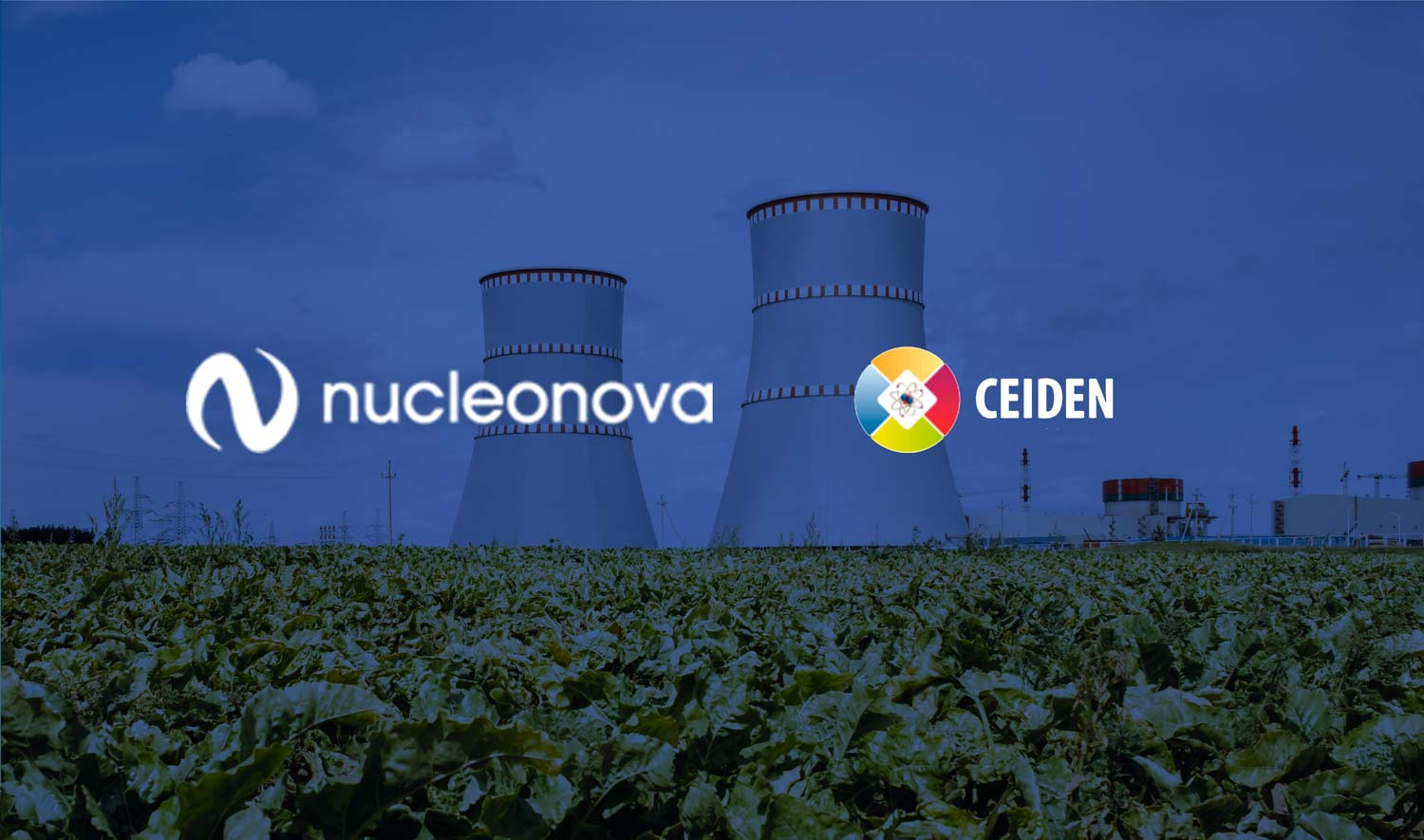 NUCLEONOVA participates in the 37th meeting of the Management Council of the Fission Nuclear Energy Technology Platform (CEIDEN)